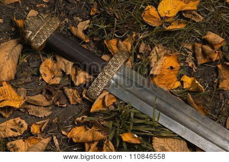 Viking Sword Against The Backdrop Of Autumn Leaves