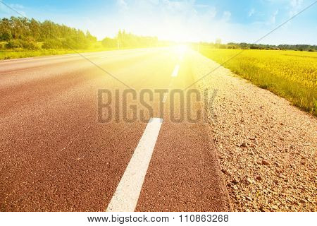Empty country asphalt road in sunshine.