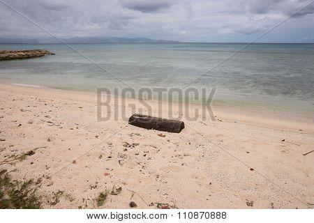 Deadwood on sand beach
