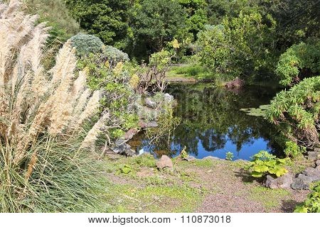 Gran Canaria Garden