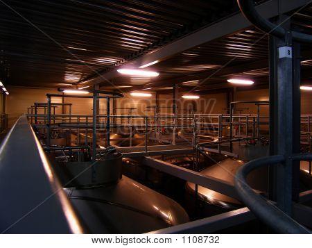 Big Beer Tanks