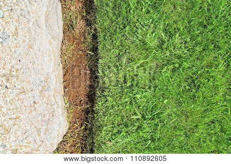 image from outdoor texture background series (wood and grass)