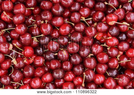 Red Cherries Fruit