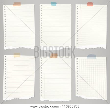 Set of torn notebook papers with lines, grid and colorful adhesive tape
