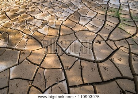 A cracked and dry earth due to lack of water.