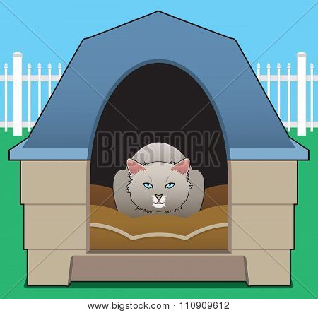 Kitty in the Doghouse