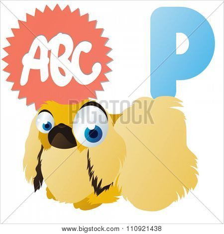 vector comic cartoon animal alphabet: P is for Pekingese dog