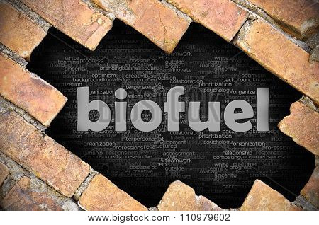 Hole In The Brick Wall With Word Biofuel