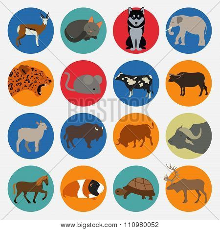 Some types of mammals icon set. Animals vector flat style