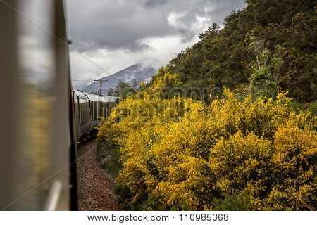 New Zealand Trans-Alpine scenic train Southern Alps Christchurch Greymouth