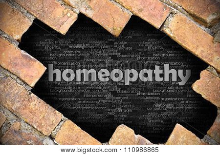 Hole In The Brick Wall With Word Homeopathy