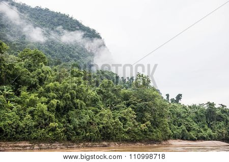 Forests on Phou Si