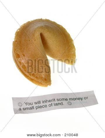 Chinese Fortune Cookie