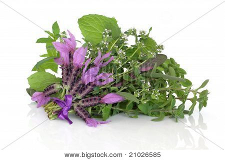 Medicinal Flower And Herb Leaves