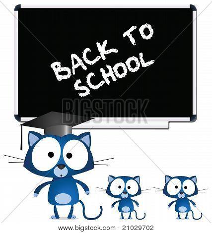 Cat teacher blackboard