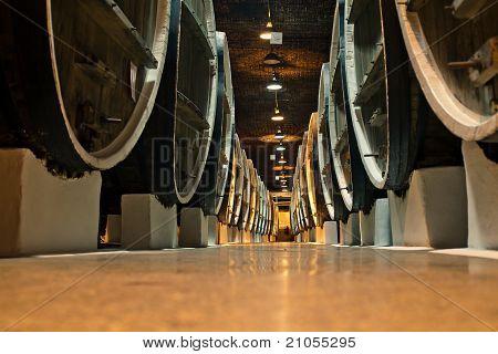 Wine Barrels In The Cellars Of Winemakers