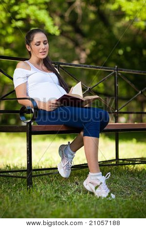 Young Pregnant  Woman With Book Sits In The Park..