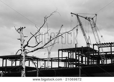 Yarda de la construcción con la grúa contra el cielo