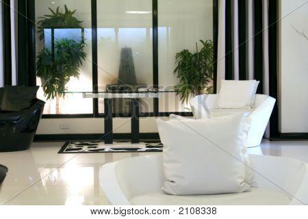Modern Elegant Room