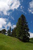 image of banska  - Spring landscape - Ottergrund Banska Stiavnica, Slovakia ** Note: Slight graininess, best at smaller sizes - JPG