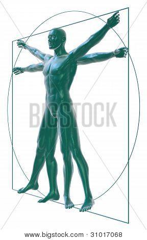 Vitruvian man on white  three-quarter view