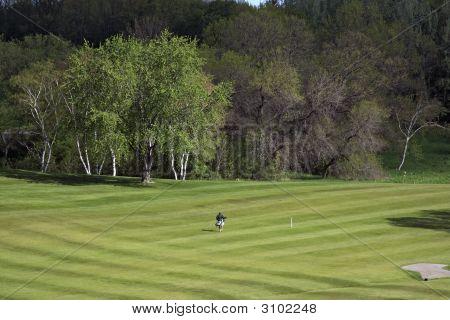 Lone Walking Golfer