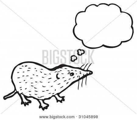 illustration of a cute shrew