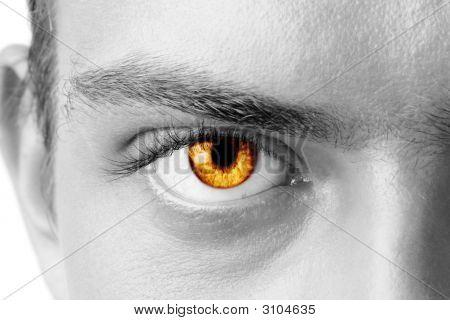 Amber Man'S Eye
