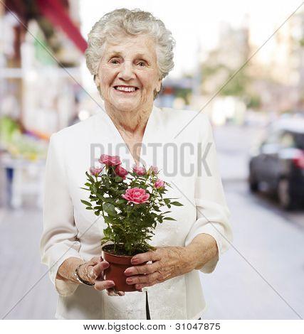 senior woman holding a flower pot against a street background