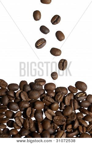 Falling Arabica Coffee Beans.