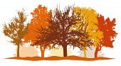 Silhouettes Of Autumn Trees (park, Forest) Bright Colors. Silhouettes Of Bare Trees Without Foliage. poster
