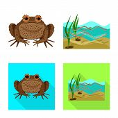 Vector Design Of Wildlife And Bog Icon. Set Of Wildlife And Reptile Stock Symbol For Web. poster