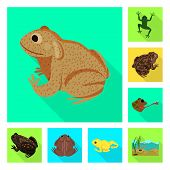 Vector Design Of Wildlife And Bog Logo. Set Of Wildlife And Reptile Stock Symbol For Web. poster