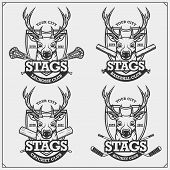 Cricket, Baseball, Lacrosse And Hockey Logos And Labels. Sport Club Emblems With Deer Or Stag. Print poster