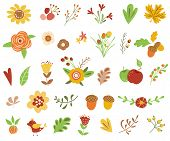 Autumn Floral Set Colorful Floral Collection Yellow Terracotta Flowers Leaves Berries Autumn Floral  poster