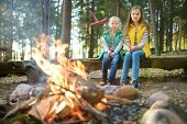 Cute Young Sisters Roasting Hotdogs On Sticks At Bonfire. Children Having Fun At Camp Fire. Camping poster