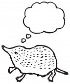 stock photo of shrew  - shrew illustration with thought bubble - JPG