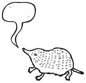 picture of shrew  - cute shrew illustration - JPG