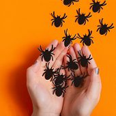 Female Hands Let Go Paper Spiders. Paper Art And Paper Craft. Festive Halloween Concept poster