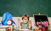 Little Boy Eat Apple At Lunch Break. Young Schoolboy Sitting At Table With Apple In Class Room. Smal poster