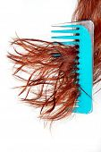 Hairbrush Has Got Confused In Hair poster