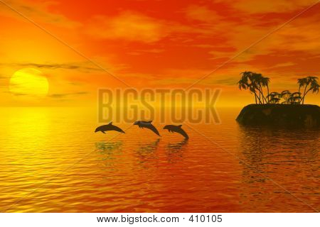 Dolphins And Sunset