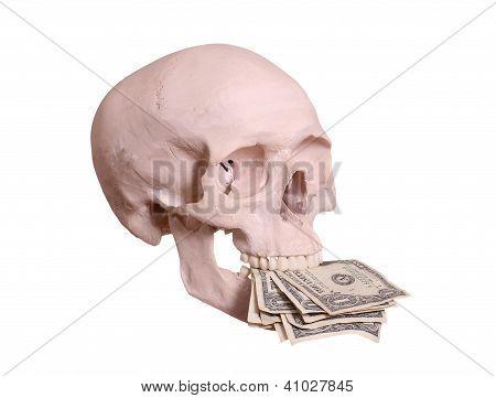 Cranium With Dollars Between Teeth