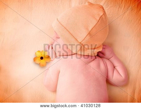 Little Newborn Baby Sleeping With Flower