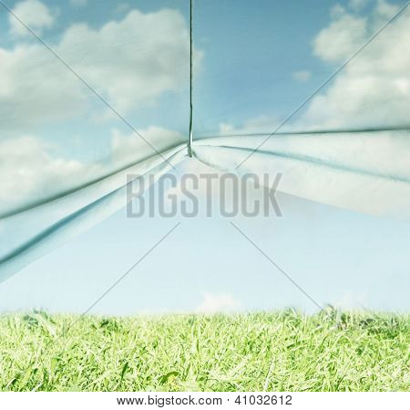 Surreal Sky And Grass