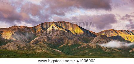 Denali Park landscapes