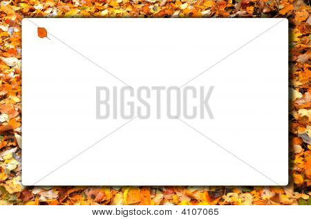 Fall Leaf Bordered Sign Horizontal