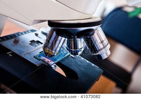 Imagem horizontal do microscópio. Close-up