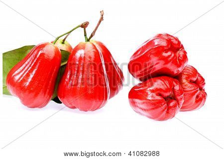 Rose Apple Fruit  On White Background