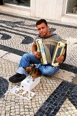 Musician With Small Cute Dog Play Accordion(Lisbon,Portugal)